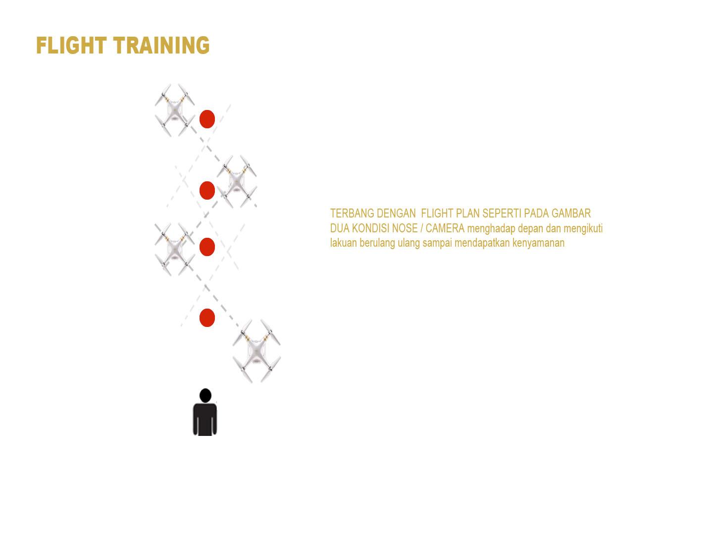 phatom training