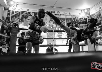 Muay thai - zealot 2016-1