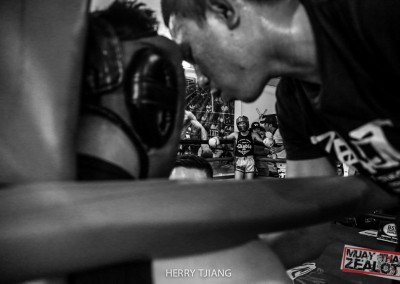 Muay thai - zealot 2016-11