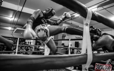 Muay thai - zealot 2016-33