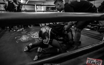 Muay thai - zealot 2016-91