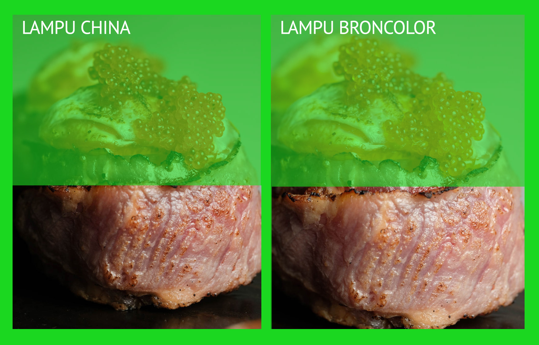 BEDA LAMPU STUDIO BRONCOLOR DAN CHINA