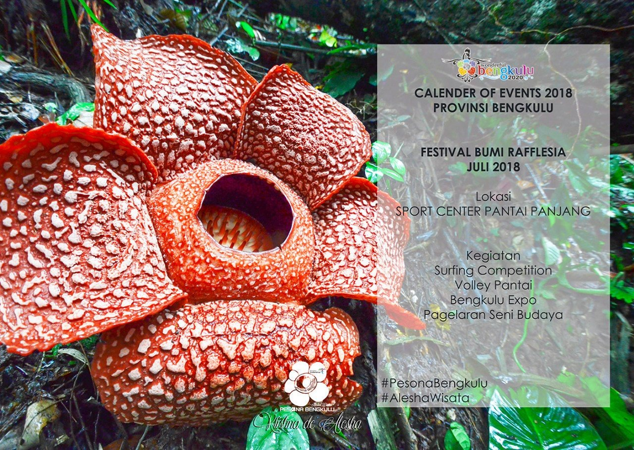 bumi rafflesia festival